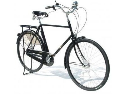 PASHLEY Roadster Classic 24.5in