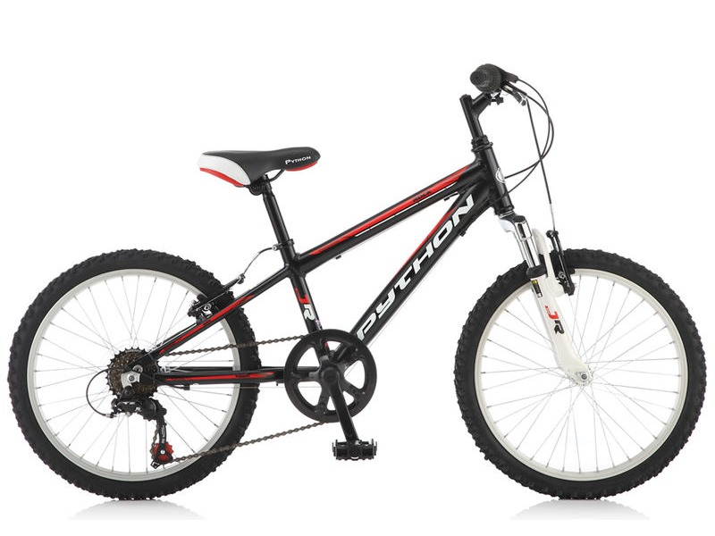 "PYTHON BIKES 20"" Rock FS BOYS click to zoom image"