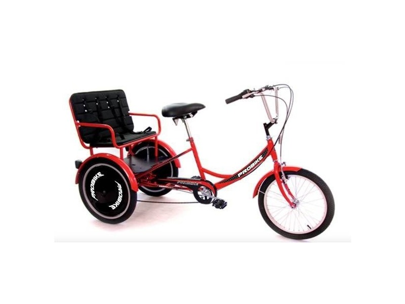 PROBIKE Trike T-800 Kids Carrier click to zoom image